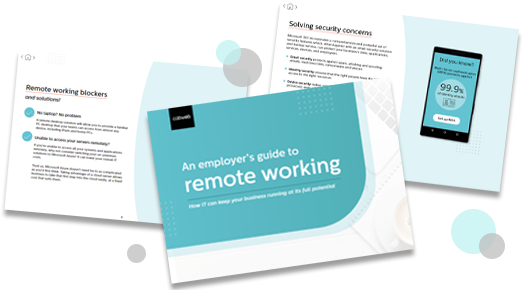 Cover of Employer's Guide to Remote Working ebook