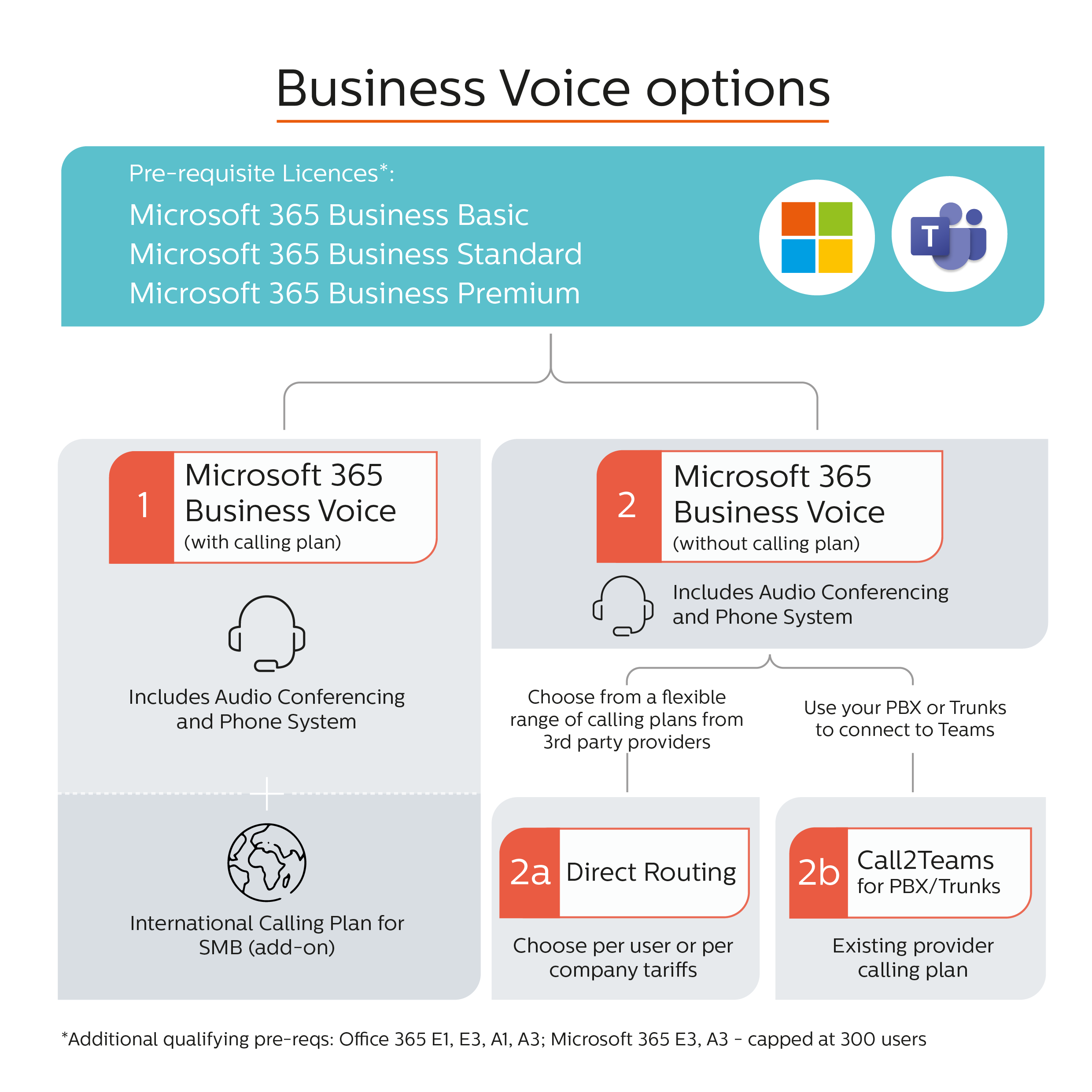 Microsoft Business Voice